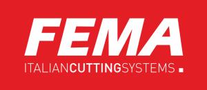 fema-300x131